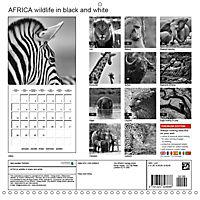 AFRICA wildlife in black and white (Wall Calendar 2019 300 × 300 mm Square) - Produktdetailbild 13