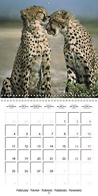 Africas wonderful animals (Wall Calendar 2019 300 × 300 mm Square) - Produktdetailbild 2