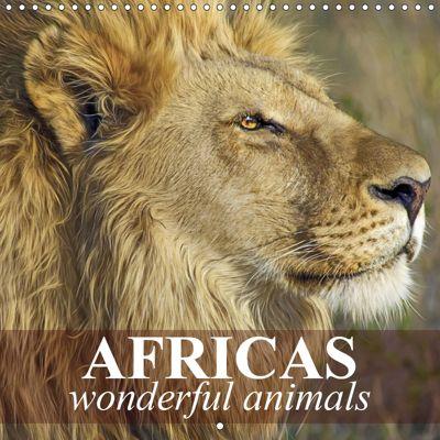 Africas wonderful animals (Wall Calendar 2019 300 × 300 mm Square), Elisabeth Stanzer