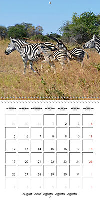 Africas wonderful animals (Wall Calendar 2019 300 × 300 mm Square) - Produktdetailbild 8