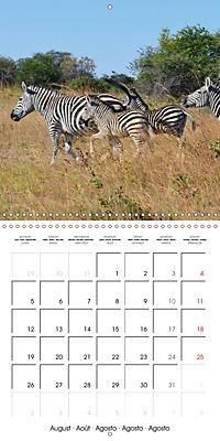 Africas wonderful animals (Wall Calendar 2019 300 × 300 mm Square) - Produktdetailbild 8