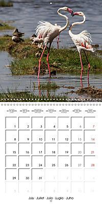 Africas wonderful animals (Wall Calendar 2019 300 × 300 mm Square) - Produktdetailbild 7