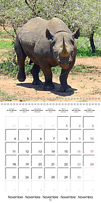 Africas wonderful animals (Wall Calendar 2019 300 × 300 mm Square) - Produktdetailbild 11