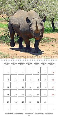 Africas wonderful animals (Wall Calendar 2019 300 × 300 mm Square) - Produktdetailbild 11