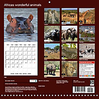 Africas wonderful animals (Wall Calendar 2019 300 × 300 mm Square) - Produktdetailbild 13