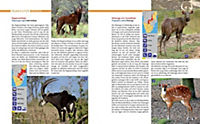 Afrika Safari Reiseführer - Produktdetailbild 7