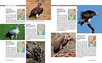 Afrika Safari Reiseführer - Produktdetailbild 12