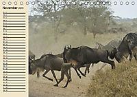 Afrika. Tiere in freier Wildbahn (Tischkalender 2019 DIN A5 quer) - Produktdetailbild 11