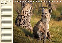 Afrika. Tiere in freier Wildbahn (Tischkalender 2019 DIN A5 quer) - Produktdetailbild 3