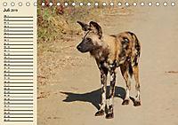 Afrika. Tiere in freier Wildbahn (Tischkalender 2019 DIN A5 quer) - Produktdetailbild 7
