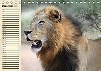 Afrika. Tiere in freier Wildbahn (Tischkalender 2019 DIN A5 quer) - Produktdetailbild 12