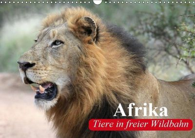 Afrika. Tiere in freier Wildbahn (Wandkalender 2019 DIN A3 quer), Elisabeth Stanzer