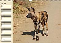 Afrika. Tiere in freier Wildbahn (Wandkalender 2019 DIN A3 quer) - Produktdetailbild 7