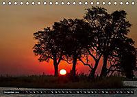 Afrikas Bäume (Tischkalender 2019 DIN A5 quer) - Produktdetailbild 12