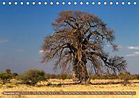 Afrikas Bäume (Tischkalender 2019 DIN A5 quer) - Produktdetailbild 11