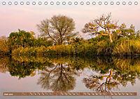 Afrikas Bäume (Tischkalender 2019 DIN A5 quer) - Produktdetailbild 6