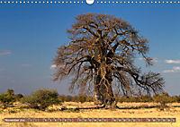 Afrikas Bäume (Wandkalender 2019 DIN A3 quer) - Produktdetailbild 11