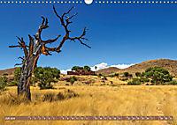 Afrikas Bäume (Wandkalender 2019 DIN A3 quer) - Produktdetailbild 7