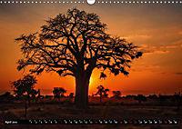 Afrikas Bäume (Wandkalender 2019 DIN A3 quer) - Produktdetailbild 4