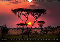 Afrikas Bäume (Wandkalender 2019 DIN A4 quer) - Produktdetailbild 1