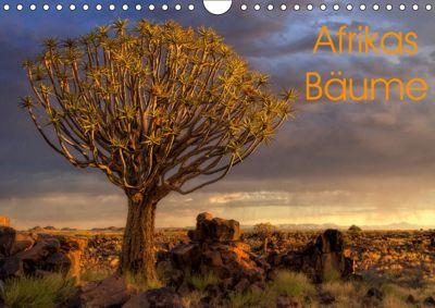 Afrikas Bäume (Wandkalender 2019 DIN A4 quer), Michael Voß