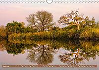 Afrikas Bäume (Wandkalender 2019 DIN A4 quer) - Produktdetailbild 6