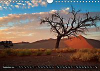 Afrikas Bäume (Wandkalender 2019 DIN A4 quer) - Produktdetailbild 9