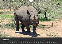 Afrikas Dickhäuter. Hippos, Nashörner und Elefanten (Wandkalender 2019 DIN A4 quer) - Produktdetailbild 3