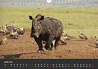 Afrikas Dickhäuter. Hippos, Nashörner und Elefanten (Wandkalender 2019 DIN A4 quer) - Produktdetailbild 6