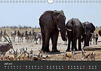 Afrikas Dickhäuter. Hippos, Nashörner und Elefanten (Wandkalender 2019 DIN A4 quer) - Produktdetailbild 7