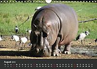 Afrikas Dickhäuter. Hippos, Nashörner und Elefanten (Wandkalender 2019 DIN A4 quer) - Produktdetailbild 8