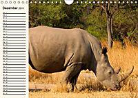 Afrikas Dickhäuter. Hippos, Nashörner und Elefanten (Wandkalender 2019 DIN A4 quer) - Produktdetailbild 12