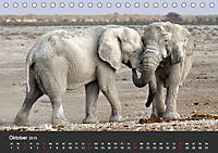 Afrikas Dickhäuter. Hippos, Nashörner und Elefanten (Tischkalender 2019 DIN A5 quer) - Produktdetailbild 10