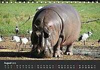Afrikas Dickhäuter. Hippos, Nashörner und Elefanten (Tischkalender 2019 DIN A5 quer) - Produktdetailbild 8