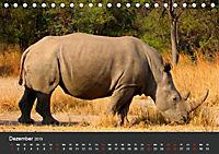 Afrikas Dickhäuter. Hippos, Nashörner und Elefanten (Tischkalender 2019 DIN A5 quer) - Produktdetailbild 12