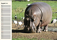 Afrikas Dickhäuter. Hippos, Nashörner und Elefanten (Wandkalender 2019 DIN A3 quer) - Produktdetailbild 8