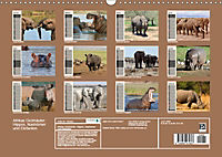 Afrikas Dickhäuter. Hippos, Nashörner und Elefanten (Wandkalender 2019 DIN A3 quer) - Produktdetailbild 13