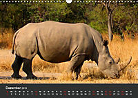 Afrikas Dickhäuter. Hippos, Nashörner und Elefanten (Wandkalender 2019 DIN A3 quer) - Produktdetailbild 12