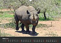 Afrikas Dickhäuter. Hippos, Nashörner und Elefanten (Wandkalender 2019 DIN A3 quer) - Produktdetailbild 3