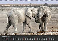 Afrikas Dickhäuter. Hippos, Nashörner und Elefanten (Wandkalender 2019 DIN A3 quer) - Produktdetailbild 10