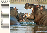 Afrikas Dickhäuter. Hippos, Nashörner und Elefanten (Tischkalender 2019 DIN A5 quer) - Produktdetailbild 2