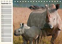 Afrikas Dickhäuter. Hippos, Nashörner und Elefanten (Tischkalender 2019 DIN A5 quer) - Produktdetailbild 9