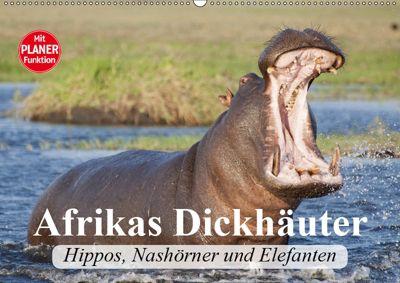 Afrikas Dickhäuter. Hippos, Nashörner und Elefanten (Wandkalender 2019 DIN A2 quer), Elisabeth Stanzer