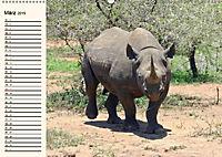 Afrikas Dickhäuter. Hippos, Nashörner und Elefanten (Wandkalender 2019 DIN A2 quer) - Produktdetailbild 3