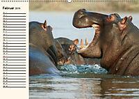 Afrikas Dickhäuter. Hippos, Nashörner und Elefanten (Wandkalender 2019 DIN A2 quer) - Produktdetailbild 2