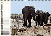 Afrikas Dickhäuter. Hippos, Nashörner und Elefanten (Wandkalender 2019 DIN A2 quer) - Produktdetailbild 7