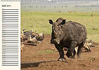 Afrikas Dickhäuter. Hippos, Nashörner und Elefanten (Wandkalender 2019 DIN A2 quer) - Produktdetailbild 6