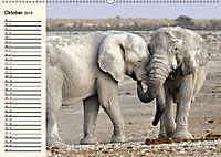 Afrikas Dickhäuter. Hippos, Nashörner und Elefanten (Wandkalender 2019 DIN A2 quer) - Produktdetailbild 10
