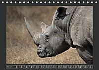 Afrikas Tiere im FokusAT-Version (Tischkalender 2019 DIN A5 quer) - Produktdetailbild 3