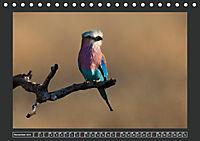 Afrikas Tiere im FokusAT-Version (Tischkalender 2019 DIN A5 quer) - Produktdetailbild 11